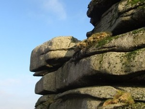 Dartmoor - Feb 2012